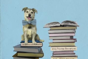 Libros leídos, un tesoro por encontrar